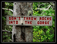 dont throw rocks