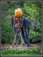 Crows Scarecrow