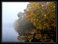 fog on McColl pond